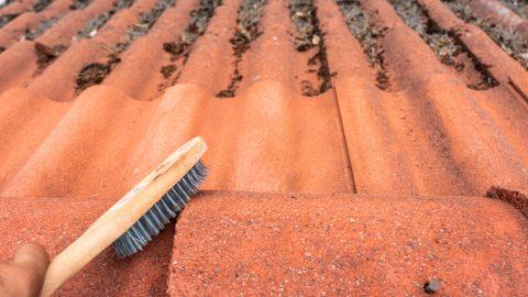 démoussage de toiture manuel avec une brosse